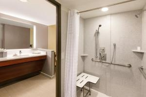 King Suite - Mobility/Hearing Accessible with Shower