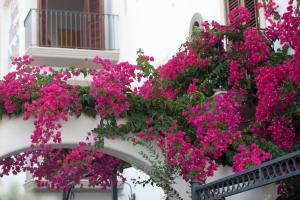 Hotel Residence Acquacalda, Hotels  Acquacalda - big - 12
