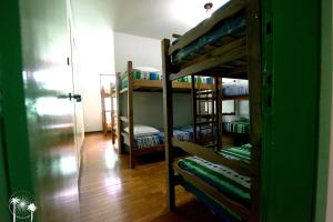 12-Bed Mixed Dormitory Room with Air Conditioning