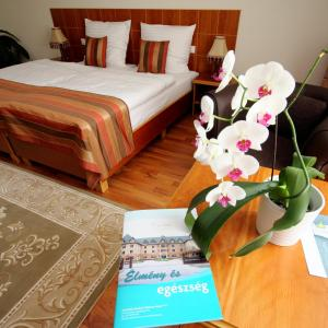 Vis Vitalis Hotel, Hotely  Kerepes - big - 9