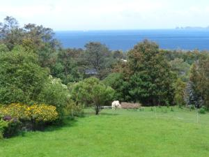 The Eagles View, Apartmány  Eaglehawk Neck - big - 8