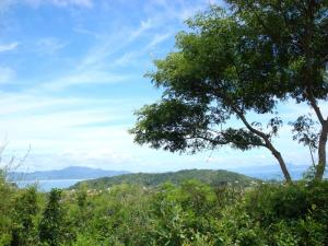 Pousada Villabella Villaggio, Penziony  Florianópolis - big - 59