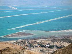 Rose Dead Sea Neve Zohar, Penzióny  Neve Zohar - big - 69