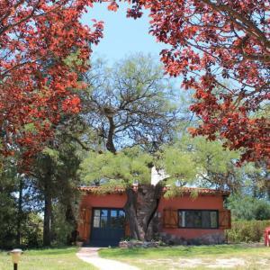 El Remanso, Мини-гостиницы  Capilla del Monte - big - 26