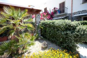 Hotel Residence Acquacalda, Hotels  Acquacalda - big - 44