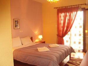 Hotel Aoos, Отели  Конитса - big - 14