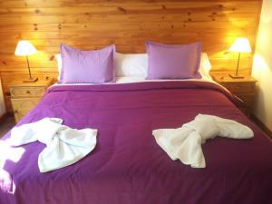 Hosteria Lekun Lekun, Gasthäuser  Villa La Angostura - big - 17