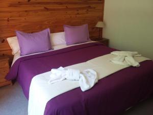 Hosteria Lekun Lekun, Penziony – hostince  Villa La Angostura - big - 21