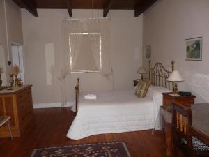 141 High Street Bed and Breakfast, Bed & Breakfasts  Oudtshoorn - big - 14