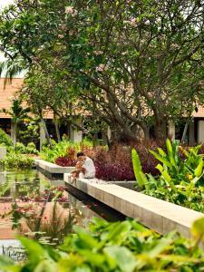 Sofitel Singapore Sentosa Resort & Spa (36 of 172)