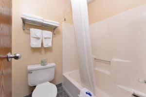 Pokój z łóżkiem typu queen-size i kabiną prysznicową – przystosowany dla osób niepełnosprawnych, dla niepalących