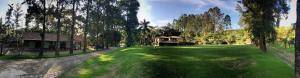 Pousada Solar dos Vieiras, Guest houses  Juiz de Fora - big - 41