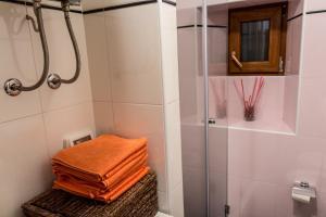 Apartment Stancija Rosello, Appartamenti  Novigrad Istria - big - 16