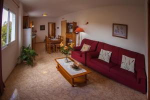 Apartamento Finca El Gallo, Apartments  Los Llanos de Aridane - big - 30