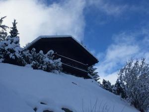 Chalet Annika, Horské chaty  Grimentz - big - 2