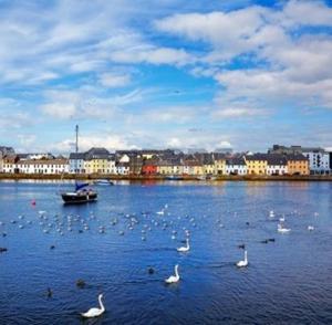 Crescent Close, Ferienwohnungen  Galway - big - 24