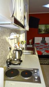 Central Apartments Shoshi, Ferienwohnungen  Tirana - big - 70