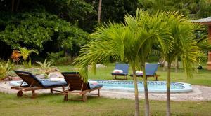 Villas des Alizes, Prázdninové domy  Grand'Anse Praslin - big - 14