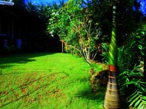 Sapphire Holiday Resort, Panziók  Ratnapura - big - 20