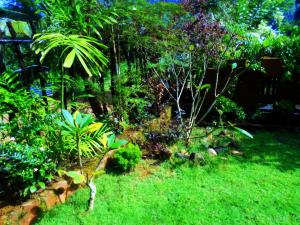 Sapphire Holiday Resort, Panziók  Ratnapura - big - 19