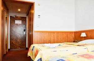 Hotel Olympik, Отели  Прага - big - 11