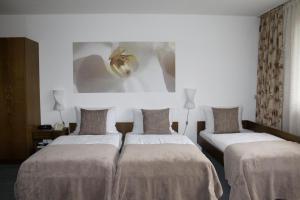Hotel Stadt Gernsbach, Szállodák  Gernsbach - big - 9