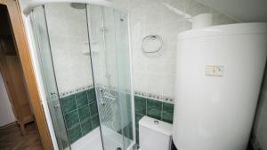 Villa Romantika, Apartmány  Zlatibor - big - 65