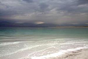 Rose Dead Sea Neve Zohar, Penzióny  Neve Zohar - big - 60