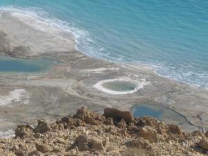 Rose Dead Sea Neve Zohar, Penzióny  Neve Zohar - big - 62
