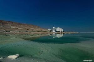 Rose Dead Sea Neve Zohar, Penzióny  Neve Zohar - big - 57