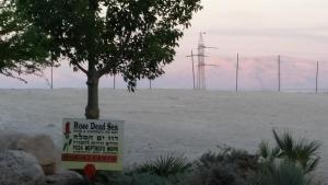 Rose Dead Sea Neve Zohar, Penzióny  Neve Zohar - big - 53