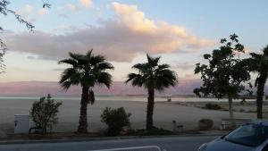 Rose Dead Sea Neve Zohar, Penzióny  Neve Zohar - big - 35
