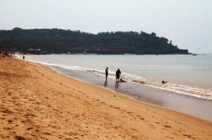Goa Beach Homes, Ferienwohnungen  Candolim - big - 16