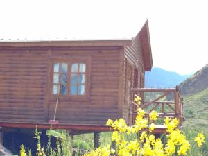 Cabañas Las Retamas, Lodge  Potrerillos - big - 11