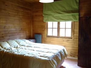 Cabañas Las Retamas, Lodge  Potrerillos - big - 14