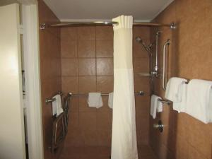 Quality Inn Fort Jackson, Hotels  Columbia - big - 5