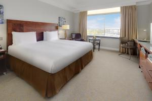 Habitación Doble con cama doble extra grande