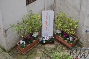 B&B Porta Baresana, Bed & Breakfast  Bitonto - big - 47