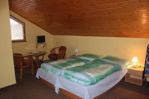 Apartmany u Janka Vinné Jazero, Guest houses  Vinné - big - 34