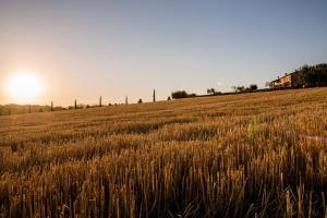 Agriturismo Il Tiro - AbcAlberghi.com