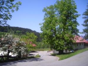 Ferienwohnung Lindenhof, Apartmány  Sankt Englmar - big - 18