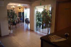 Fani Hotel, Aparthotely  Loutra Edipsou - big - 63
