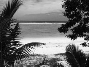 Rarotonga Villas, Villen  Rarotonga - big - 37