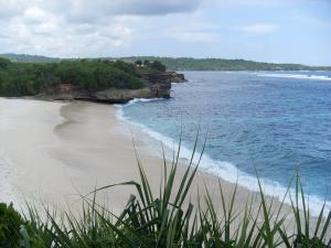 Villa Waru, Holiday parks  Lembongan - big - 49