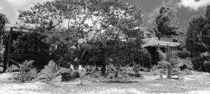 Rarotonga Villas, Villen  Rarotonga - big - 43