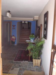 Apartamentos Turísticos Batlle Laspaules, Appartamenti  Laspaúles - big - 48