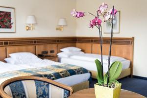 Hotel Mondschein, Hotels  Innsbruck - big - 30
