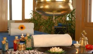 Radisson Hotel Shimla, Hotels  Shimla - big - 26