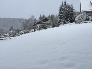 Bed and Breakfast Am Knittenberg, Penziony  Winterberg - big - 5