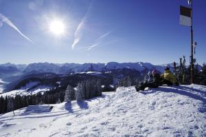Ferienhof Schweizer, Farm stays  Schwarzenberg im Bregenzerwald - big - 29